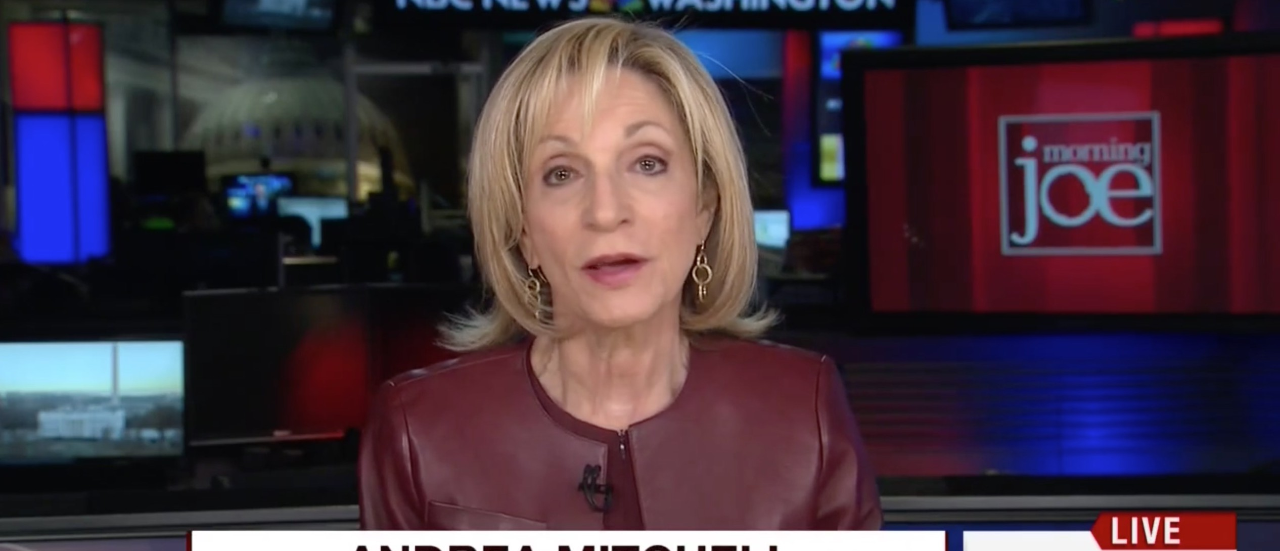 NBC's Mitchell: If The Clintons Call Trump Sexist, 'They Lose' [screen shot MSNBC]