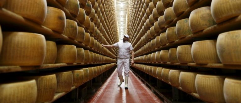 Worker inspects wheel of Parmesan cheese at storehouse shelf 4 Madonne Caseificio dell'Emilia dairy cooperative in Modena, Italy, February 16, 2016. REUTERS/Alessandro Bianchi