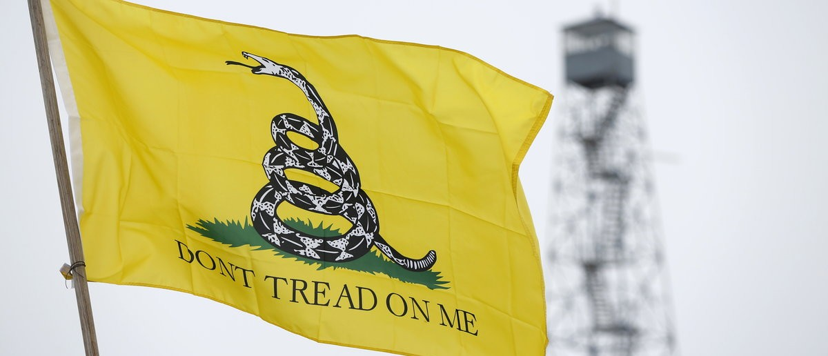 A Gadsden flag flies at the Malheur National Wildlife Refuge near Burns, Oregon, January 10, 2016. Members of self-styled militia groups met on Friday with armed protesters occupying the federal wildlife refuge in Oregon, pledging support for their cause, if not their methods, and offering to act as a peace-keeping force in the week-long standoff over land rights. REUTERS/Jim Urquhart