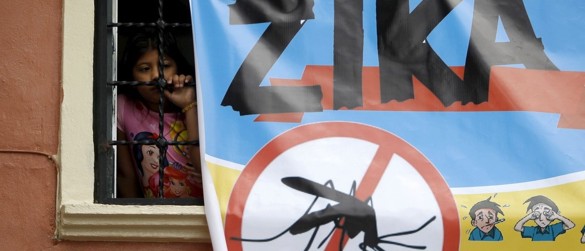 A woman looks on next to a banner as soldiers and municipal health workers take part in cleaning of the streets, gardens and homes as part of the city's efforts to prevent the spread of the Zika virus vector, the Aedes aegypti mosquito, in Tegucigalpa, Honduras, February 6, 2016. REUTERS/Jorge Cabrera