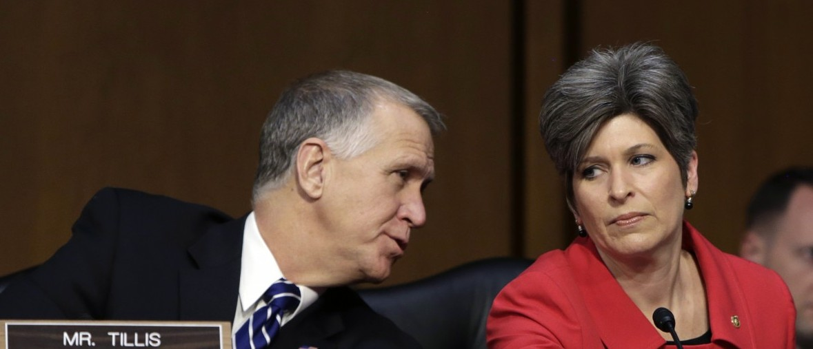 Newly-elected United States Senator Joni Ernst (R-IA) (R) listens to fellow Senator Thom Tillis (R-NC) (L) at the Senate Armed Services Committee in Washington January 21, 2015. Ernst gave the Republican response to President Barack Obama's State of the Union Address last night.     REUTERS/Gary Cameron