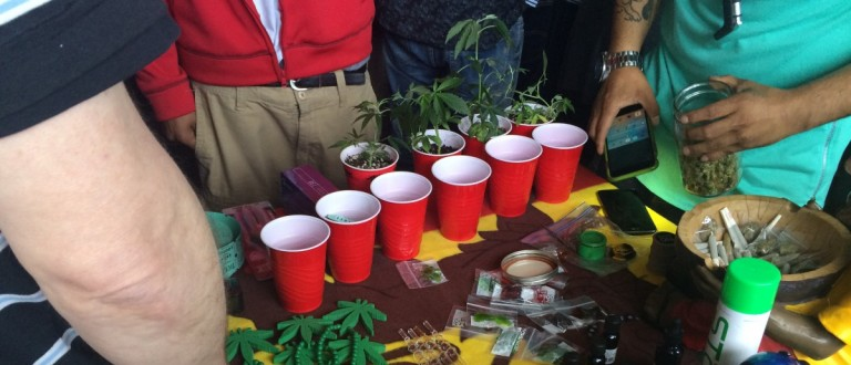 Marijuana Advocates Rally On 4/20 (Connor D. Wolf/ DCNF)