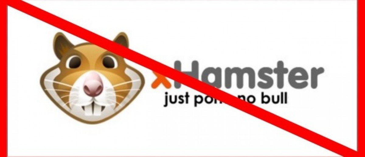 Porn Site 'XHamster' Blocks Access To NC Users Over 'Anti-LGBT' Legislation (logo: XHamster.com)
