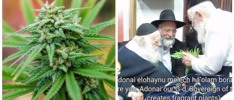 Sha-Pot Shalom: Rabbi Officially Deems Medicinal Marijuana Use Kosher (Shutterstock/YouTube)
