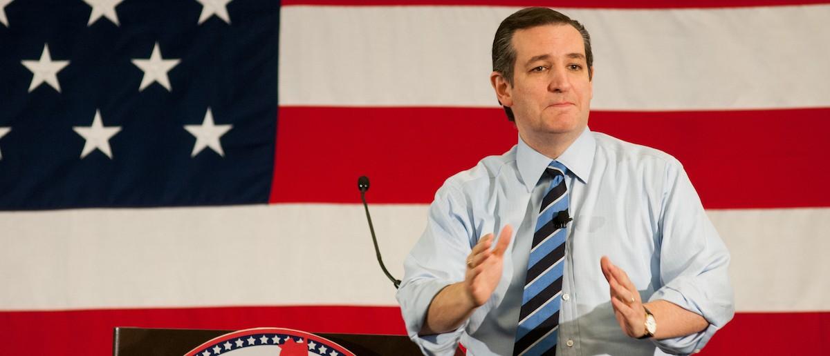 Ted Cruz (Credit: Andrew Cline/Shutterstock)