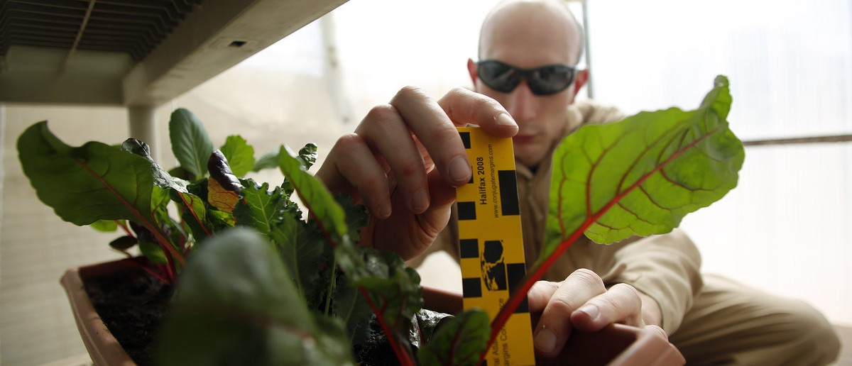 Hans van 't Woud, a mapping researcher and the health and safety officer of Crew 125 EuroMoonMars B mission, checks on plants grown at the Mars Desert Research Station (MDRS) outside Hanksville in the Utah desert March 2, 2013. The MDRS aims to investigate the possibility of a human exploration of Mars and uses the Utah desert's Mars-like terrain to simulate working conditions on the red planet. Scientists, students and enthusiasts work together developing field tactics and studying the terrain. All outdoor exploration is done wearing simulated spacesuits and carrying air supply packs and crews live together in a small communication base with limited amounts of electricity, food, oxygen and water. Everything needed to survive must be produced, fixed and replaced on site. Picture taken March 2, 2013.  REUTERS/Jim Urquhart