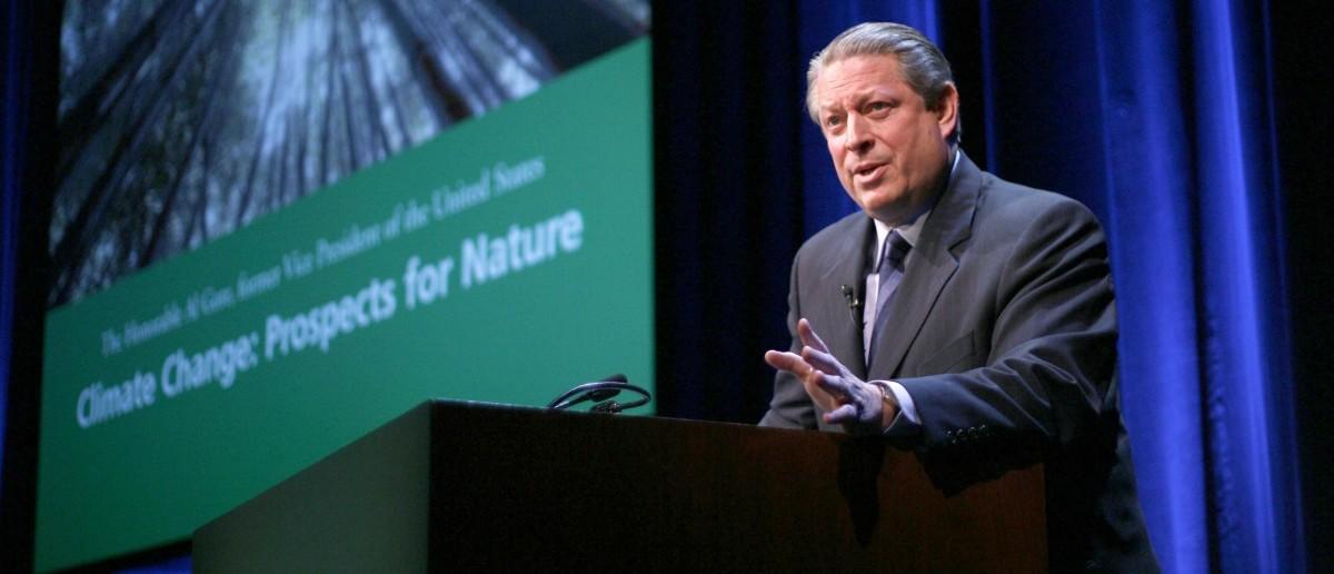 Former US Vice-President Al Gore: stocklight / Shutterstock.com