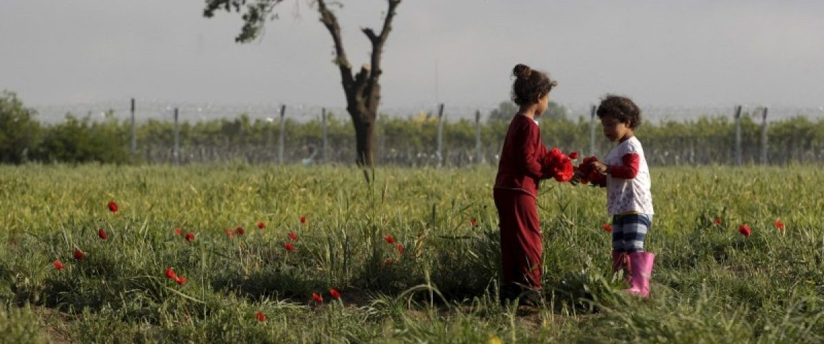 Two children gather poppies at a field next to a makeshift camp for migrants and refugees at the Greek-Macedonian border near the village of Idomeni, Greece, April 24, 2016. REUTERS/Alexandros Avramidis