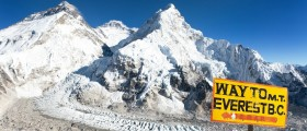 Woman Tries To Climb Mount Everest To Prove 'Vegans Can Do Anything'; Dies