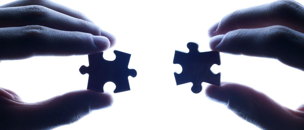 Puzzle pieces, Shutterstock, ilkefoto
