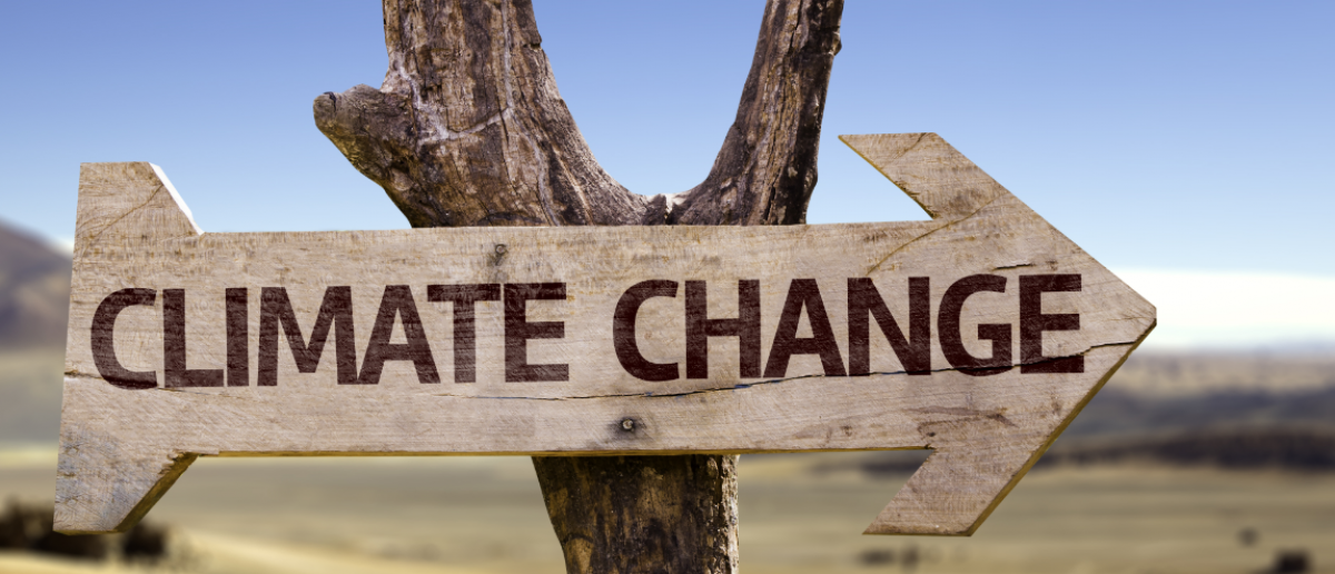 Climate Change wooden sign with a desert background (Shutterstock/Gustavo