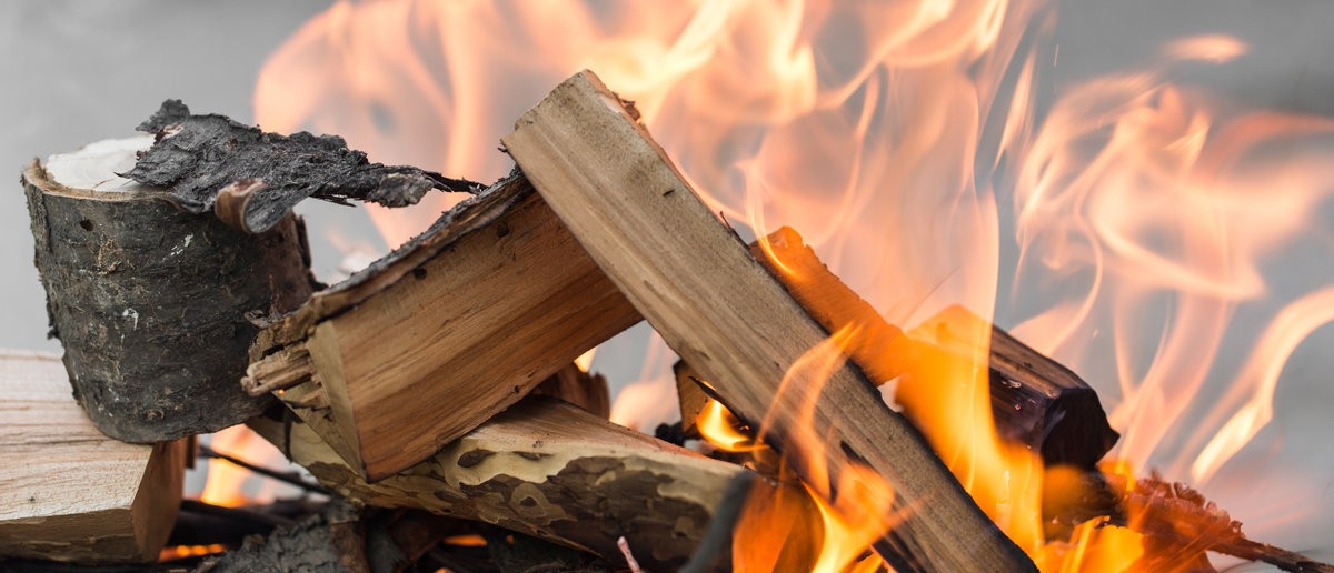 A wood burning fire. Shutterstock.com / schankz