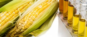 Corn generated ethanol biofuel with test tubes on white background. Shutterstock.com/ThamKC