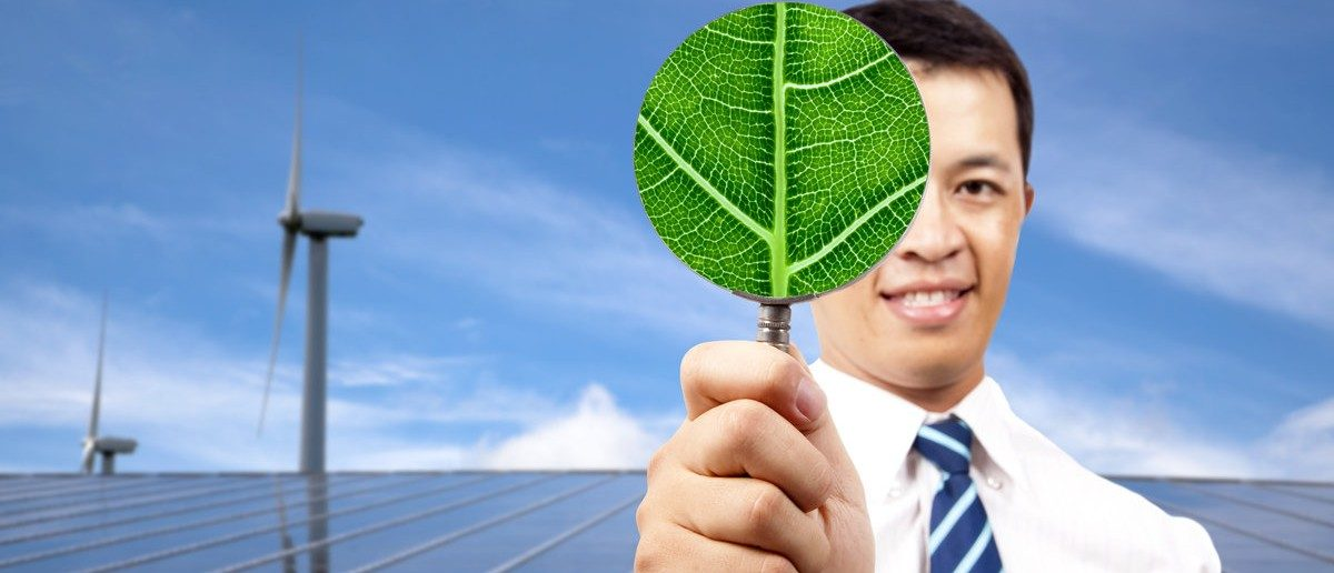 Green energy business concept.young businessman holding leaf and standing in front of solar panel and wind turbine. Shutterstock.com/ Tom Wang
