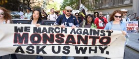 EPA Quickly Takes Study Offline Showing No Evidence Weed Killer Causes Cancer