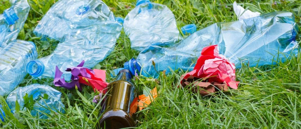 Heap of rubbish on grass in sunny park, plastic and glass bottles, bottle caps and paper, concept of environmental protection, littering of environment. Credit: ratmaner/Shuttershock