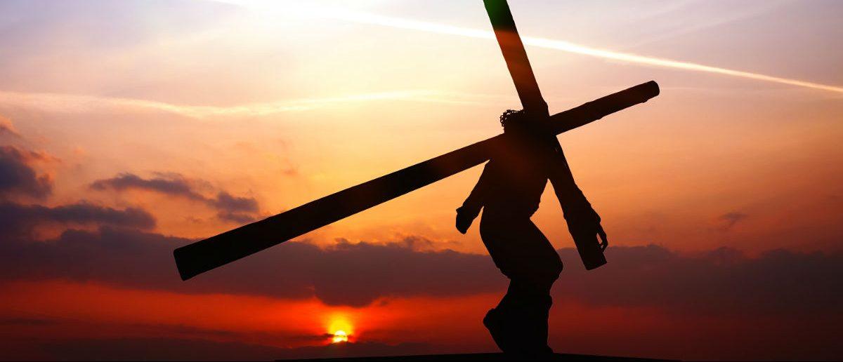 Jesus, WDG Photo, Shutterstock