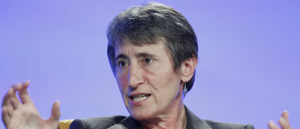 Sally Jewell speaks at the Fortune Brainstorm Green conference in Laguna Niguel, California. (REUTERS/Lucy Nicholson)