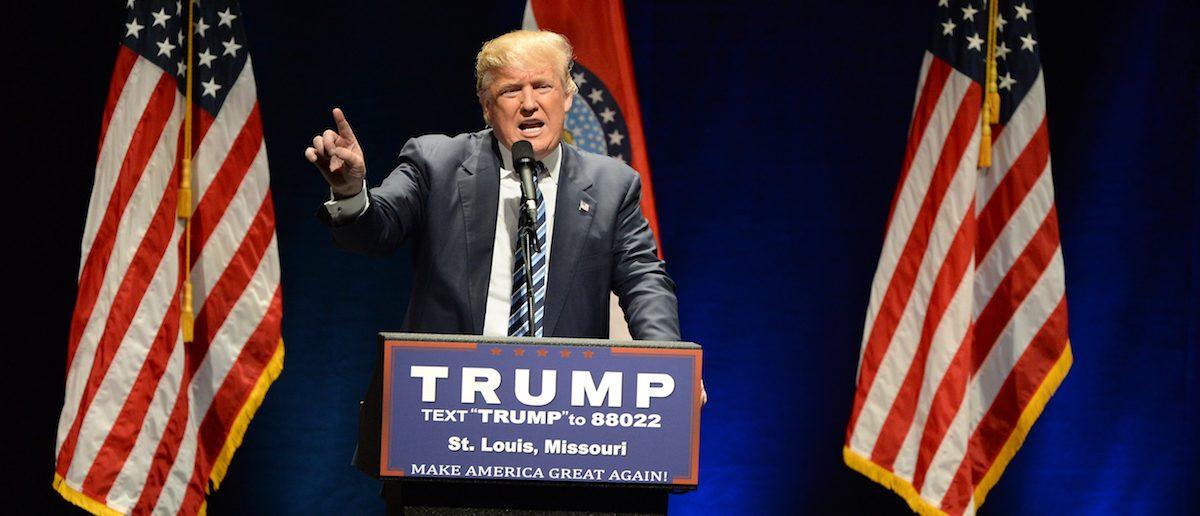 Saint Louis, MO, USA - March 11, 2016: Donald Trump (Shutterstock)