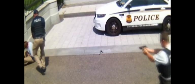 White House security footage shows Secret Service shooting intruder. Screenshot/Twitter/@nezrataylor