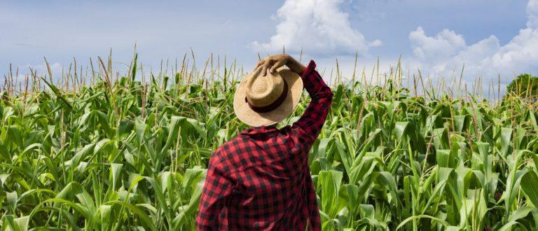 Farm worker (Andrenery/ Shutterstock)