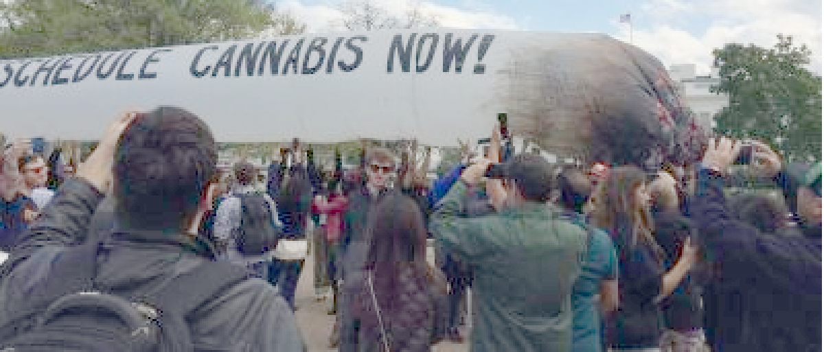 Weed Protest At White House