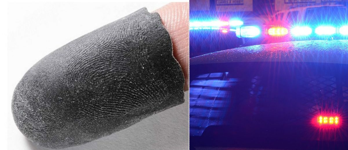 Replicated Fingerprint: Courtesy of Michigan State University, Biometrics Research Group. Police Lights via Shutterstock