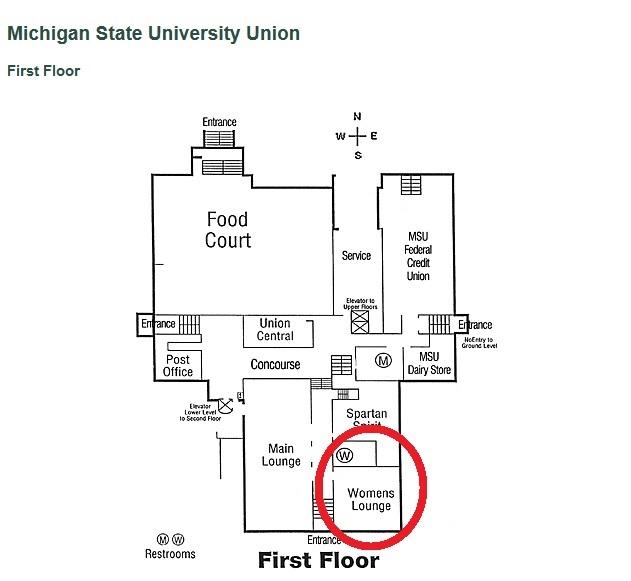 Michigan State University website