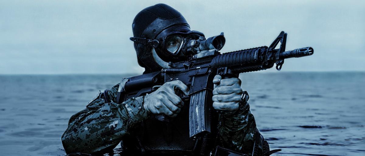 Navy Seal Shutterstock/Oleg Zabielin