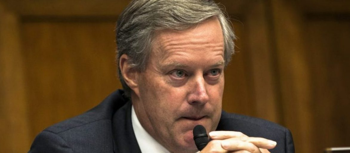Rep. Mark Meadows (R-NC) questions IRS Commissioner John Koskinen as he testifies before the House Oversight and Government Reform Committee in Washington Monday June 23, 2014. REUTERS/James Lawler Duggan