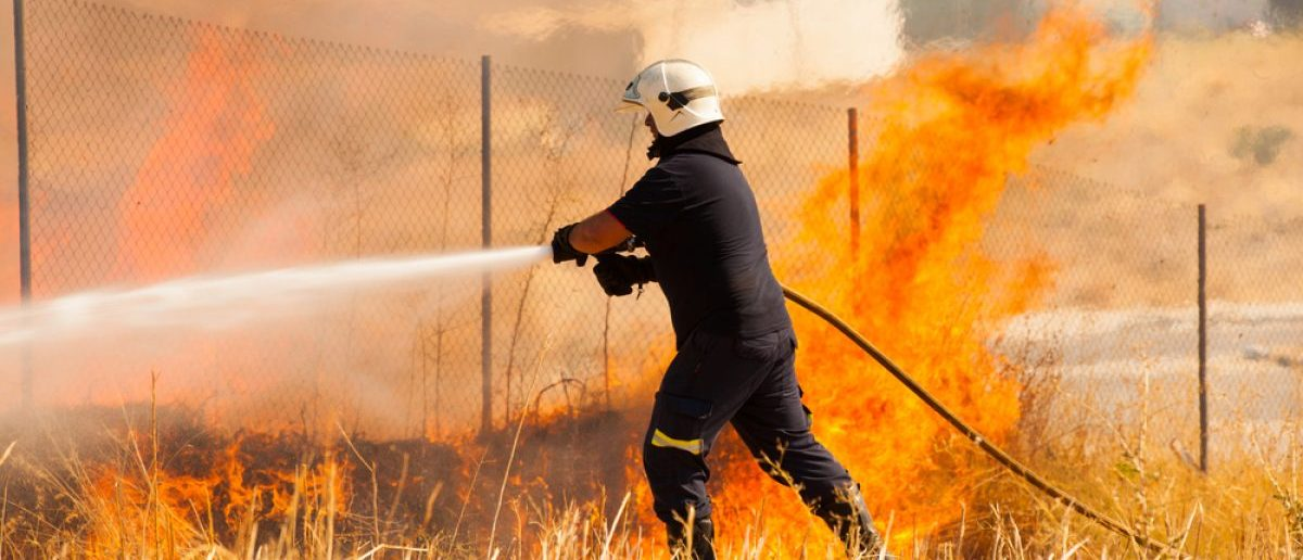 A firefighter extinguishes a fire in the forest with a water hose. [Shutterstock - David M G]