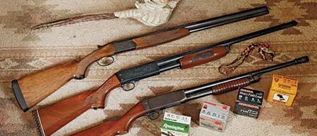 efee839108e60 The All-Around 20-Gauge | The Daily Caller