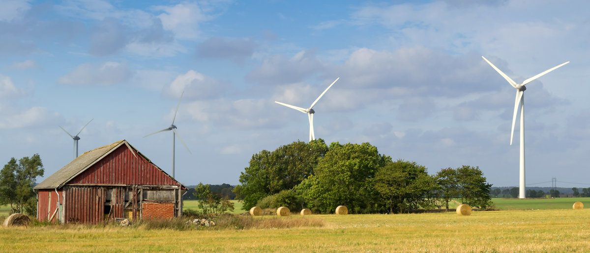 Wind turbines near abandoned home on Swedish agriculture landscape  (Shutterstock/Piotr Wawrzyniuk)