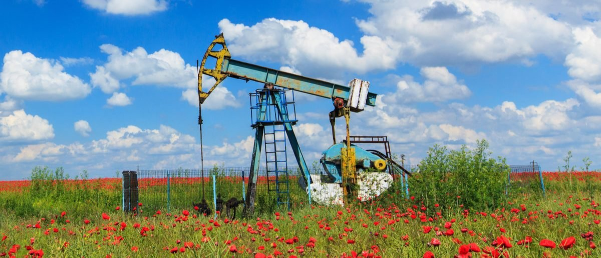 Oil and gas well in rural countryside with poppy field (Shutterstock/Calin Tatu)