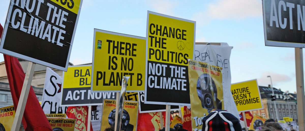 Global warming protesters hold signs (Shutterstock/Piotr Wawrzyniuk)