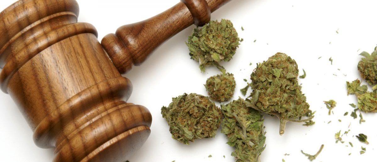 A gavel sits next to marijuana