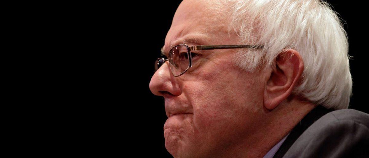 Bernie Sanders (Shutterstock/Trevor Collens)