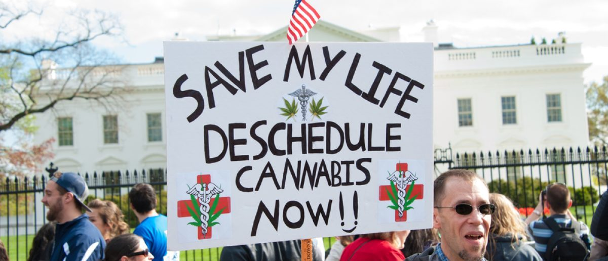 A sign asking the government to deschedule mcannabis. Shutterstock/ Rena Schild