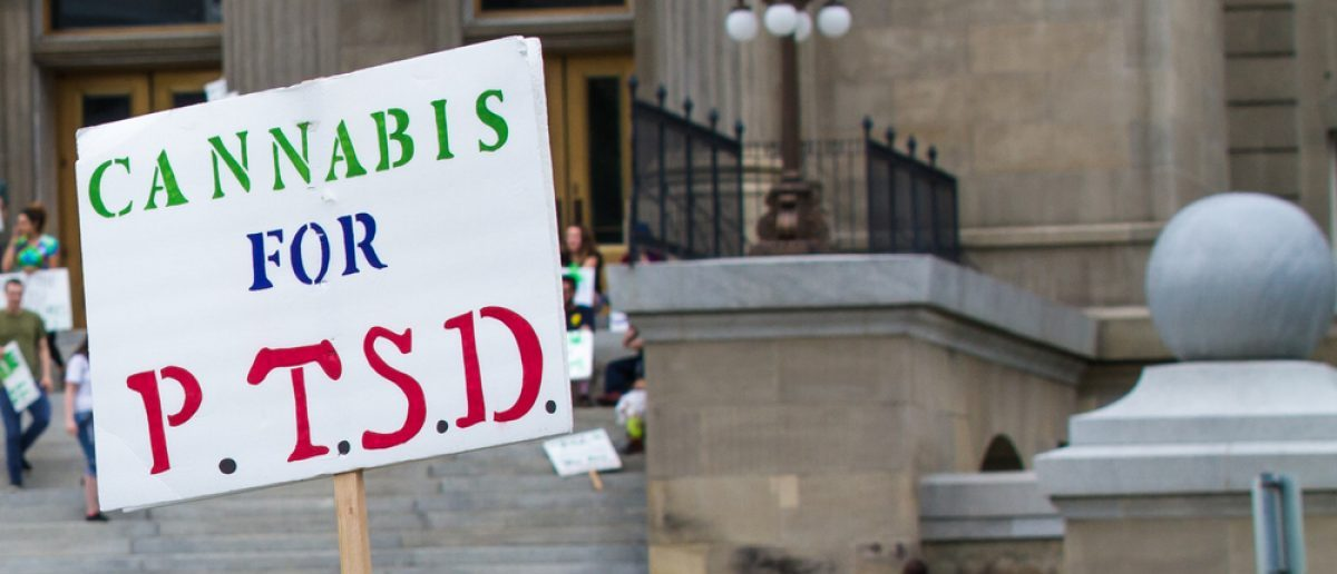 A protestor calls for allowing marijuana for PTSD