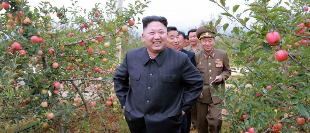 North Korean leader Kim Jong Un gives field guidance to the Kosan Combined Fruit Farm in this undated photo released by North Korea's Korean Central News Agency (KCNA) in Pyongyang September 18, 2016.KCNA via REUTERS