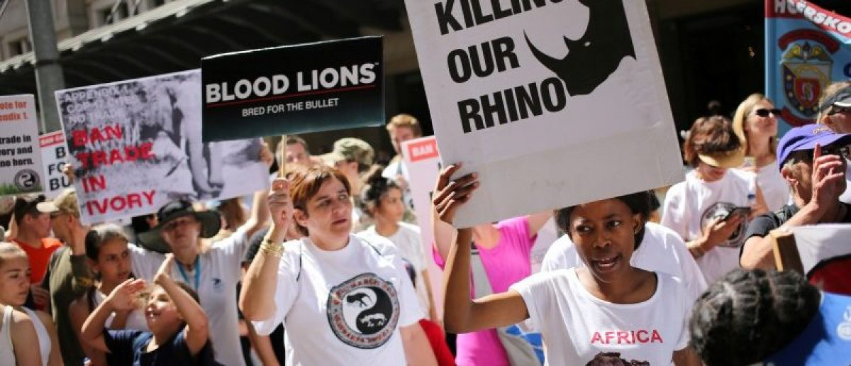Animal rights activists demonstrate outside the Sandton convention center, a venue hosting the 17th meeting of the U.N.'s Convention on International Trade in Endangered Species (CITES)  in Johannesburg, South Africa, September 24, 2016. REUTERS/Siphiwe Sibeko