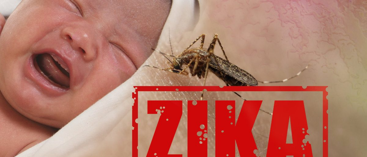 Health issue concept, image of crying baby bitten by Aedes Aegypti mosquito as Zika Virus carrier (Shutterstock/airdone)
