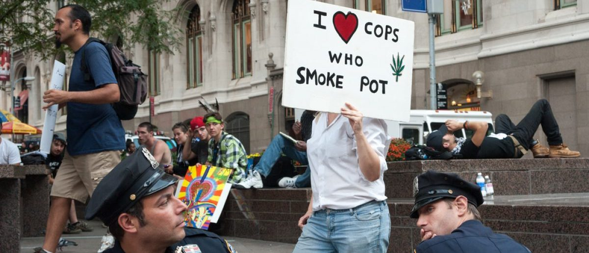 NEW YORK - SEPT 17 2012: Occupy Wall Street Protester with pro marijuana sign mark one year anniversary of protest in Zuccotti Park in New York City. [Shutterstock - gabriel12 - 188166089]