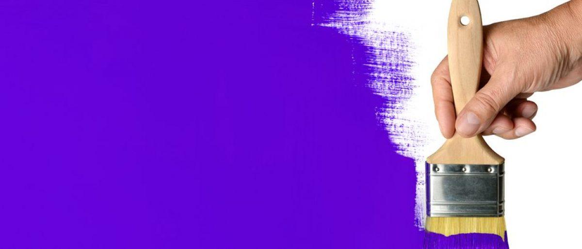 Shutterstock Image/Purple Paint