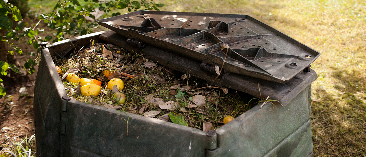 Composting is one of the oldest agricultural practicesPhoto: Alzbeta/Shutterstock