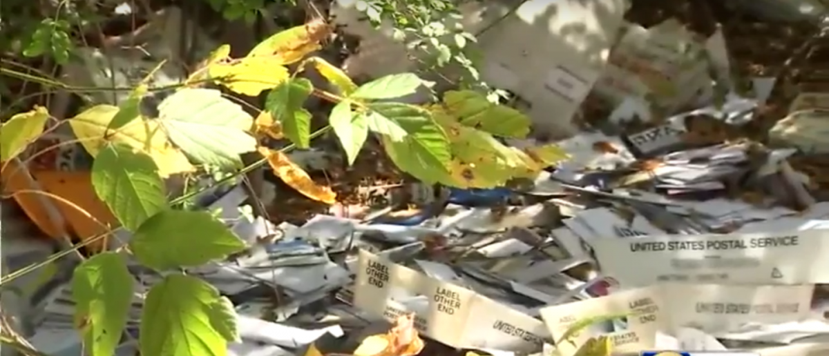 Thousands of pieces of mail dumped in a ditch Photo: YouTube screengrab/WSB-TV