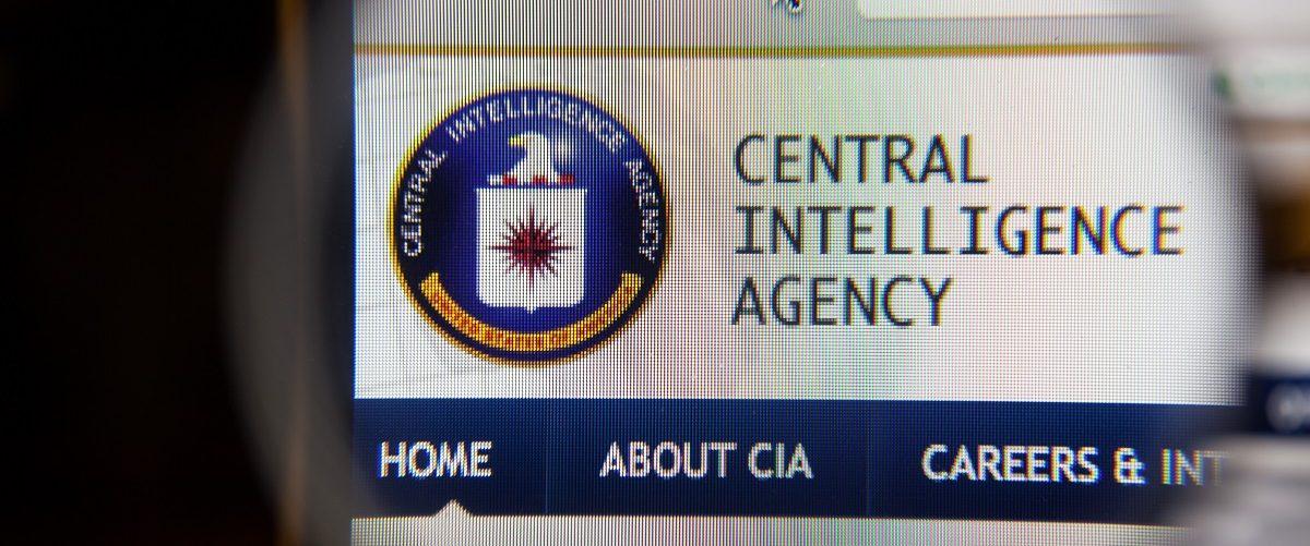 Screenshot of the CIA website. (GongTo/Shutterstock).