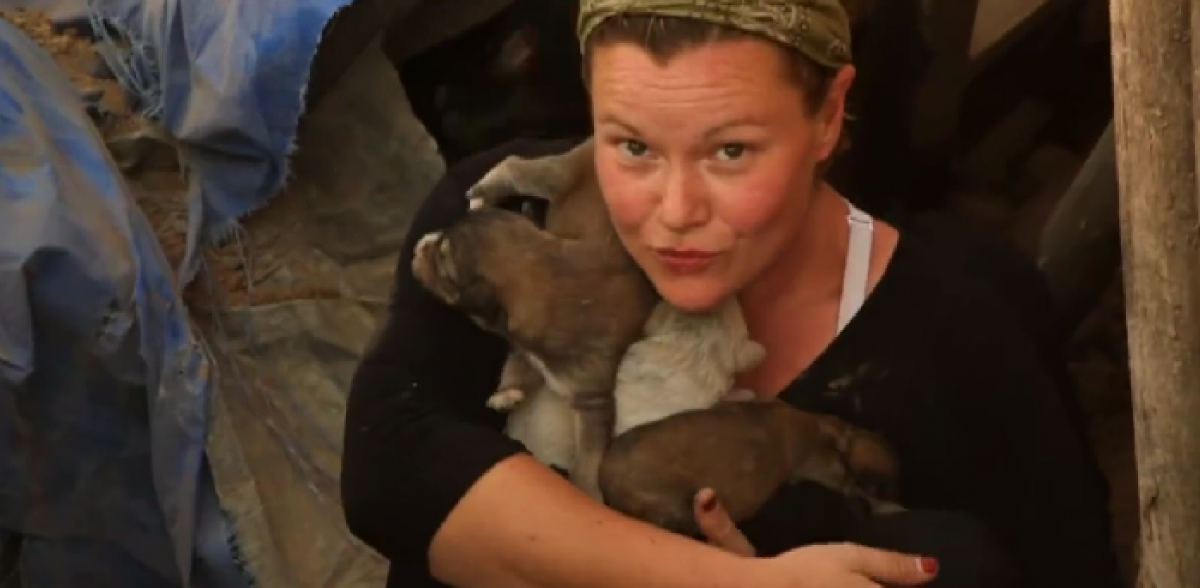 Puppies Rescued From ISIS Tunnel
