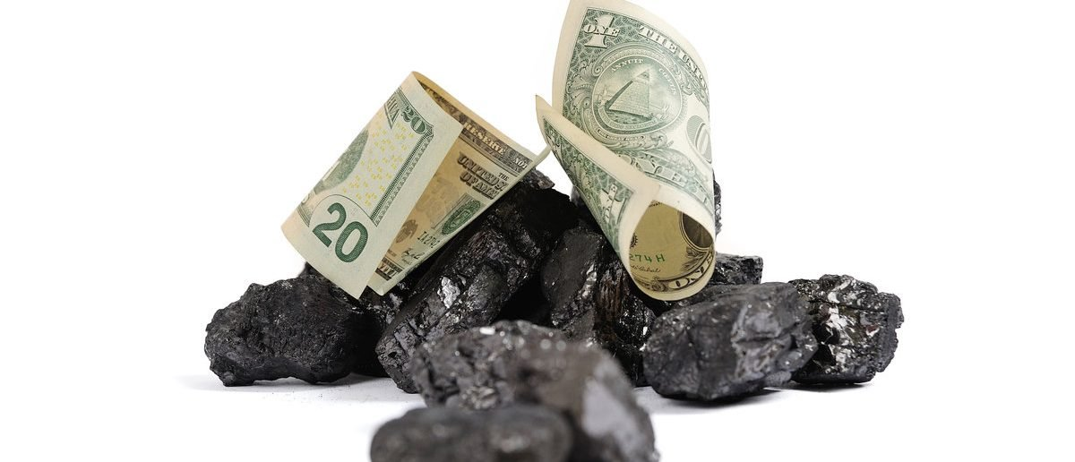 Coal price in dollar terms (Shutterstock/V_Lisovoy)