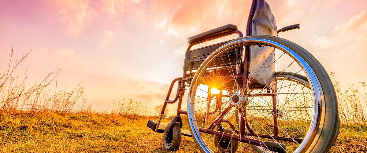 Wheelchair in field. (bubutu/Shutterstock)
